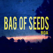 Bag of Seeds de BoA