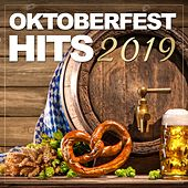 Oktoberfest Hits 2019 de Various Artists