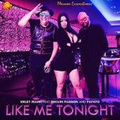Like Me Tonight by Dayami Padron