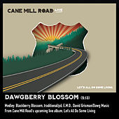 Dawgberry Blossom Medley: Blackberry Blossom / E.M.D. (Live) de Cane Mill Road