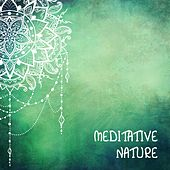 Meditative Nature by Nature Sounds (1)