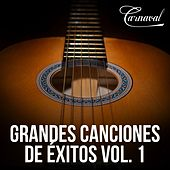 Grandes Canciones de Éxitos, Vol. 1 de Various Artists