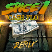 Cash Flo (Remix) by Spice 1
