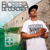 Floresta de Concreto by Bruno Bo