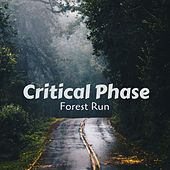 Forest Run by Critical Phase