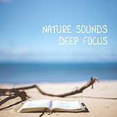 Nature Sounds Deep Focus by Nature Sounds (1)