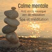 Calme mentale – Anti stress musique zen de relaxation, Spa et méditation, Détente et bien-être de Multi Interprètes