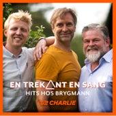 En Trekant En Sang 1 - Hits Hos Brygmann fra Various Artists