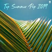 Top Summer Pop 2019 by Various Artists