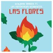 Las Flores by Benjamín Amadeo