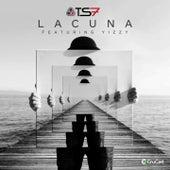 Lacuna von Ts7