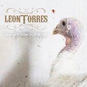 Mi Perro Negro de León Torres