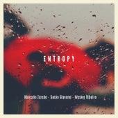 Entropy von Marcelo Zarske
