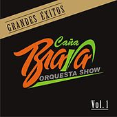 Grandes Exitos Vol.1 by Orquesta Caña Brava