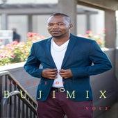 The Best of Bujimix, Vol. 2 de Bujimix