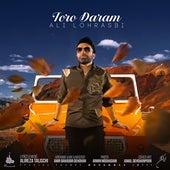 Toro Daram by Ali Lohrasbi