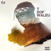 T Dof Waleu de Dudu