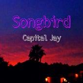 Songbird de Capital Jay