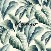 Manso (Versión instrumental) by Niki
