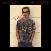 The Lost Word de Carlo Pennisi