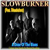 A Dose of the Blues by Various Artists