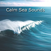 Calm Sea Sounds by Ocean Sounds (1)