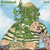Botanical [Side A] by Reed