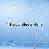 1 Hour: Sleep Rain by Rain Sounds