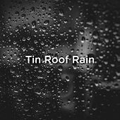 Tin Roof Rain by Rain Sounds