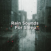 Rain Sounds For Sleep by Rain Sounds