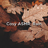 Cosy ASMR: Rain by Rain Sounds