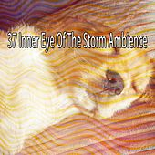 37 Inner Eye of the Storm Ambience by Rain Sounds and White Noise