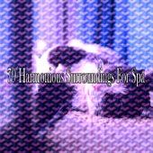 79 Harmonious Surroundings for Spa de Water Sound Natural White Noise