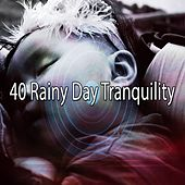 40 Rainy Day Tranquility by Rain Sounds and White Noise