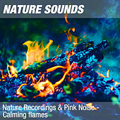 Nature Recordings & Pink Noise - Calming flames by Nature Sounds (1)
