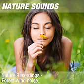 Nature Recordings - Forest wind noise by Nature Sounds (1)