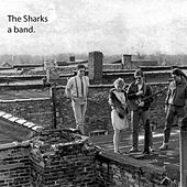 Livin On Borrowed Time by The Sharks