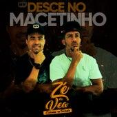 Desce no Macetinho by Zé da Vea