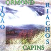 Capins e Riachos von João Ormond