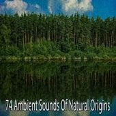 74 Ambient Sounds of Natural Origins von Yoga