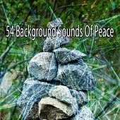 54 Background Sounds of Peace by Yoga Workout Music (1)