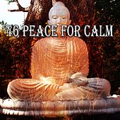 46 Peace for Calm von Lullabies for Deep Meditation