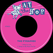 What is Love / Deep in My Heart for You de The Pyramids
