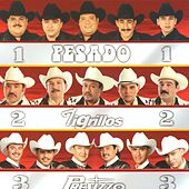 Tres Grandes Norteños de Various Artists