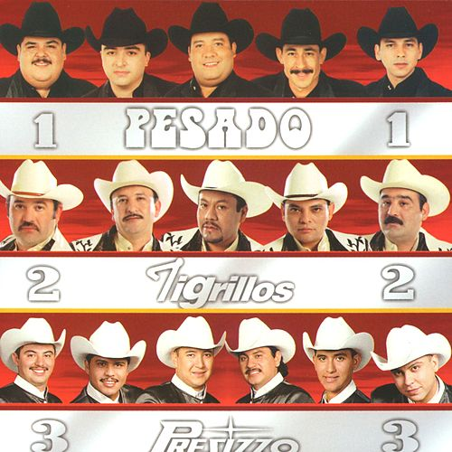 Tres Grandes Norteños by Various Artists