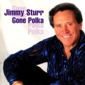 Gone Polka by Jimmy Sturr