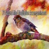 71 Natural Mind Meditation Accompaniments von Massage Therapy Music