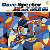Blues from the Inside Out by Dave Specter