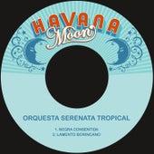 Negra Consentida / Lamento Borincano von Orquesta Serenata Tropical