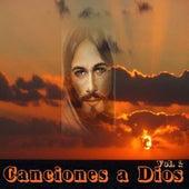 Canciones a Dios, Vol. 2 de Various Artists